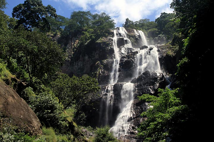 Udzungwa National Park 1