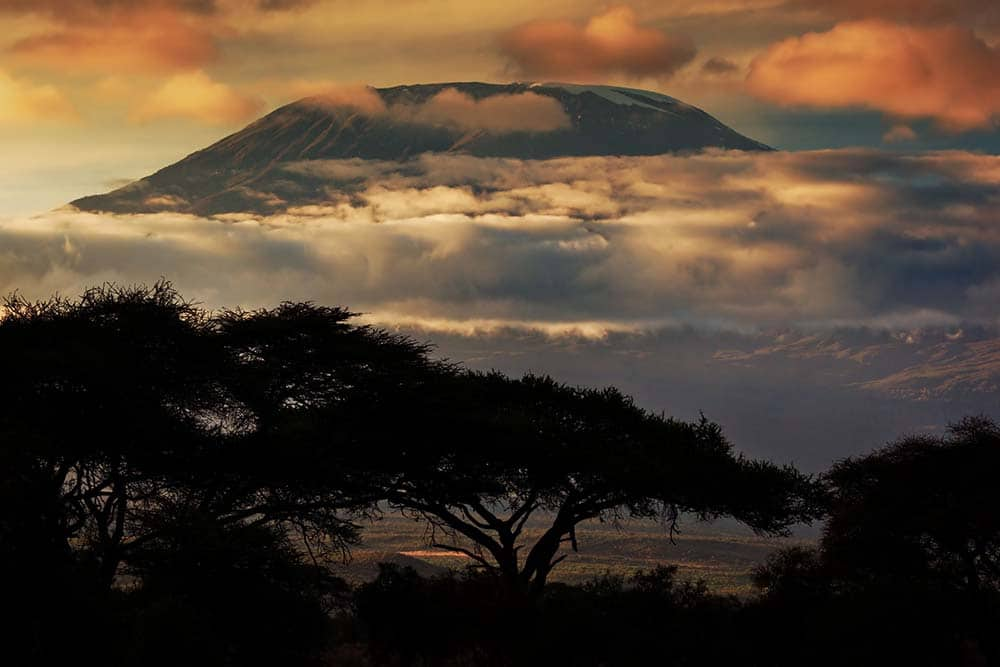17962428 - mount kilimanjaro and clouds line at sunset, view from savanna landscape in amboseli, kenya, africa