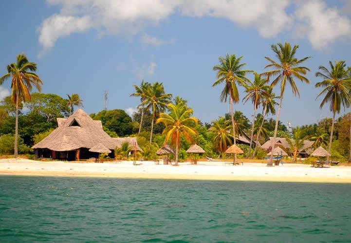 mafia island 3